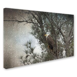 'Last Winter Blast Bald Eagle' Graphic Art Print on Wrapped Canvas by Trademark Fine Art