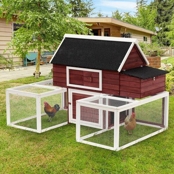 Garnett Modular Wooden Backyard Chicken Coop with Nesting Box and Dual Outdoor Runs by Tucker Murphy Pet