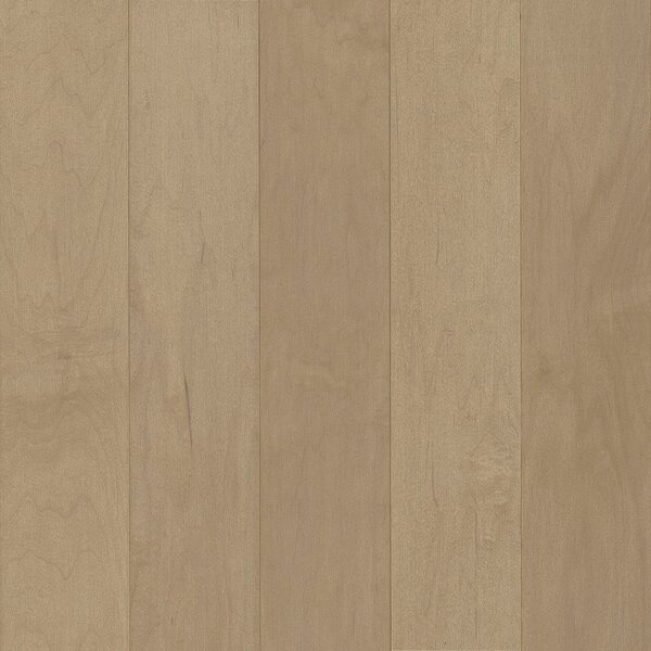 Prime Harvest 5 Solid Maple Hardwood Flooring in Mountain Ice by Armstrong Flooring