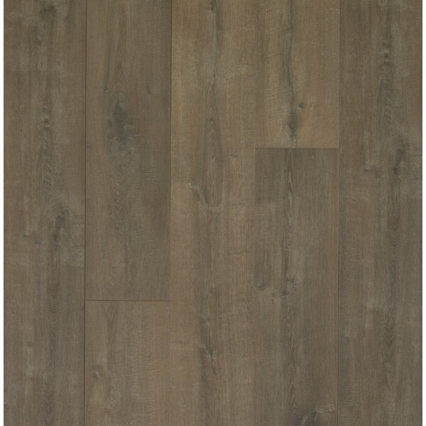 Colossia 9 x 80 x 10mm Oak Laminate Flooring in Barrington by Quick-Step