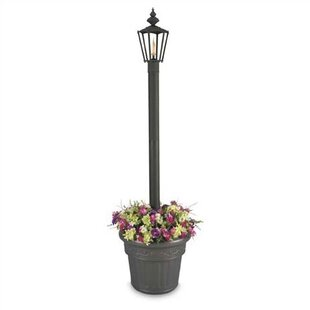 Inexpensive Islander 1-Light 80 Post Light By Patio Living Concepts