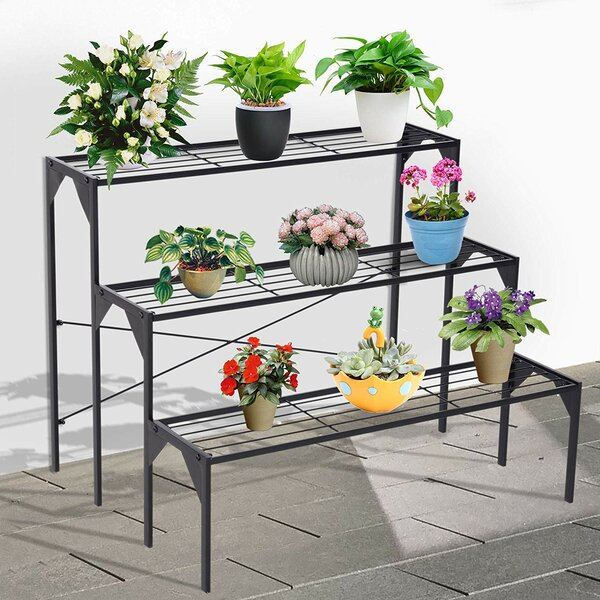 Vaughn Multi-Tiered Plant Stand by Williston Forge