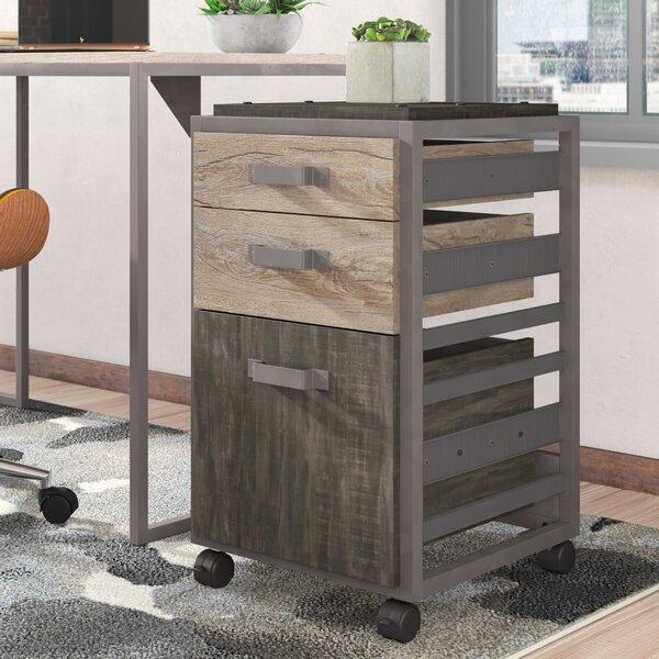 Rosemarie Industrial 3 Piece Desk Office Suite by Greyleigh