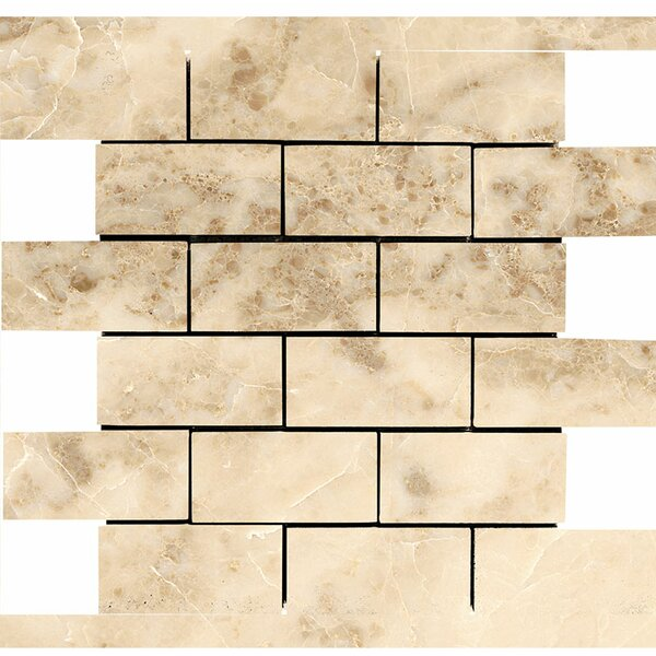 Brick 2 x 4 Stone Mosaic Tile in Cappuccino Polished by Parvatile