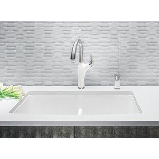White Kitchen Sink Undermount Contemporary Save With T