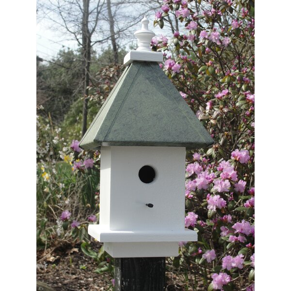 Manor 20 in x 10 in x 10 in Birdhouse by Wooden Expression Birdhouses