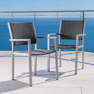 Royalston Aluminum Frame Dining Arm Chair (Set of 2)