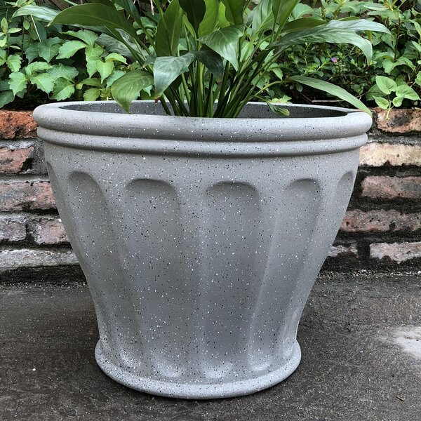 Northampt Footed Flute Pot Planter by Charlton Home