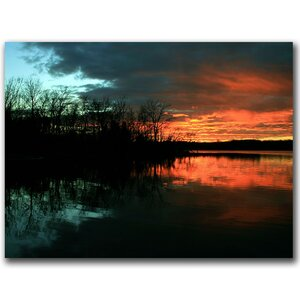 'Life' by CATeyes Framed Photographic Print on Wrapped Canvas by Trademark Fine Art