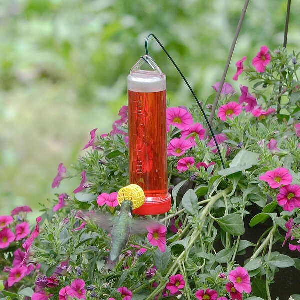 Planter Box Hummingbird Feeder by Perky Pet