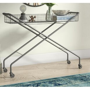 Wymore Rolling Metal Basket Console Table By Trent Austin Design