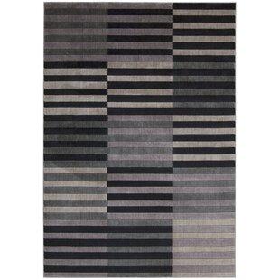 Kaiti Hand Woven Black/Gray Area Rug ByOrren Ellis