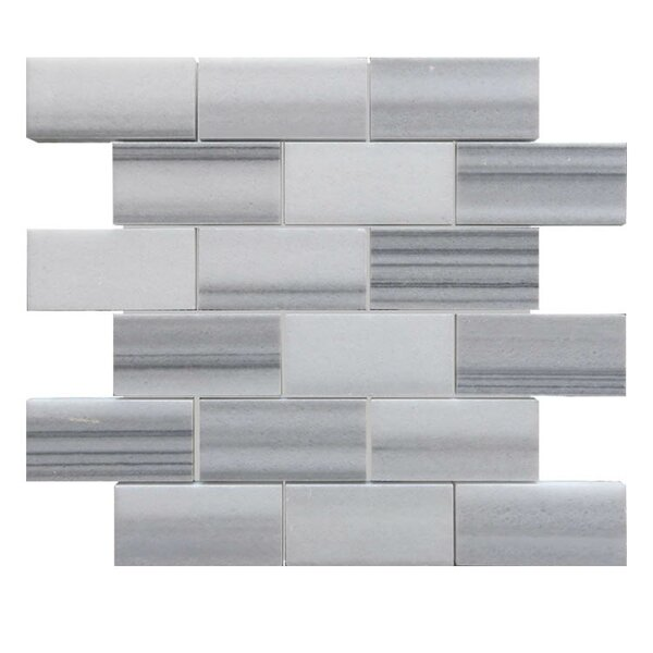 Polished 2 x 4 Natural Stone Mosaic Tile in Marmara White by QDI Surfaces