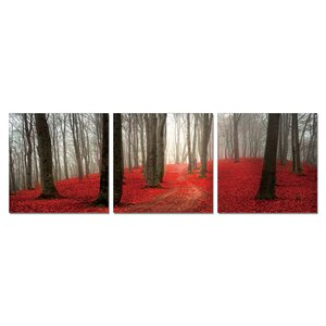 'Dawn Forest' Wall Mounted Triptych 3 Piece Photographic Print Set by Charlton Home