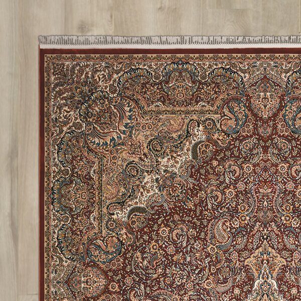 Catarina Terracotta Area Rug by Astoria Grand