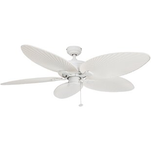 Hunter palm leaf ceiling fan wayfair search results for hunter palm leaf ceiling fan aloadofball Image collections