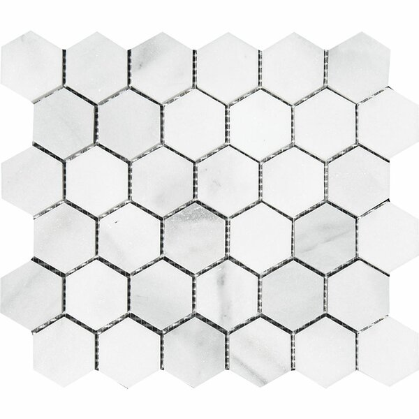 Verona Hexagon 2 x 2 Stone Mosaic Tile in Bianco Honed by Parvatile