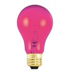 25W Pink 120-Volt Incandescent Light Bulb (Set of 19) by Bulbrite Industries