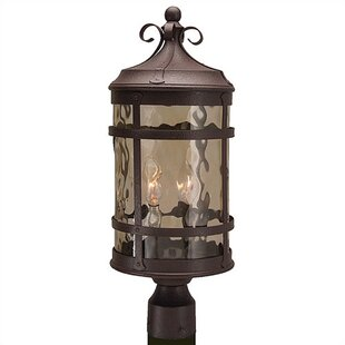 Great Price Oakhill Outdoor 2-Light Post Light By Charlton Home