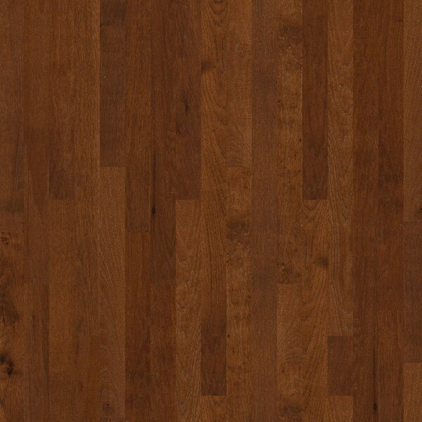 Cambridge Hickory 3-1/4 Solid Hickory Hardwood Flooring in Spur by Shaw Floors