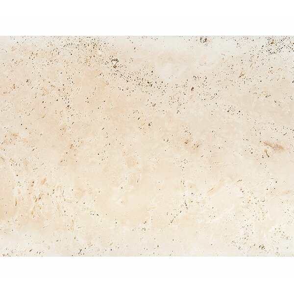 Straight Edge 16 x 24 Travertine Field Tile in Honed Ivory by Parvatile