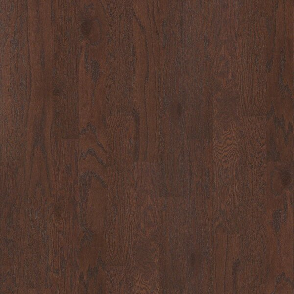Oak Grove 5 Engineered Red Oak Hardwood Flooring in Pooler by Shaw Floors