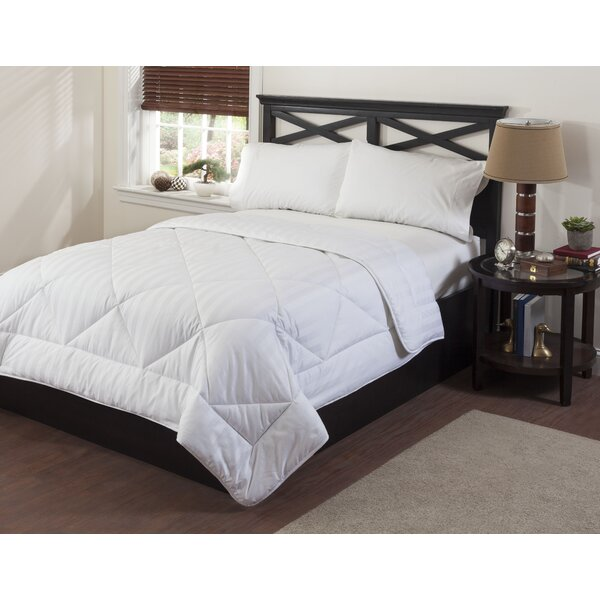 Circles Home Premier Comforter by Right Choice Bedding