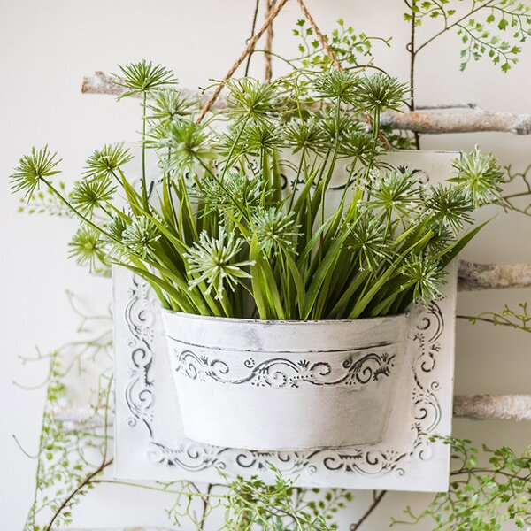 Rustic Snowflake Grass Hanging Flowering Grass Planter by Ophelia & Co.