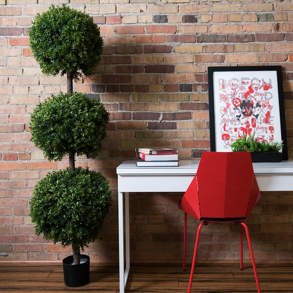 Boxwood Triple Ball Tree Round Topiary in Pot by Darby Home Co