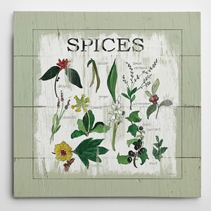 'Shiplap Spices' by Carol Robinson Graphic Art on Wrapped Canvas by Wexford Home