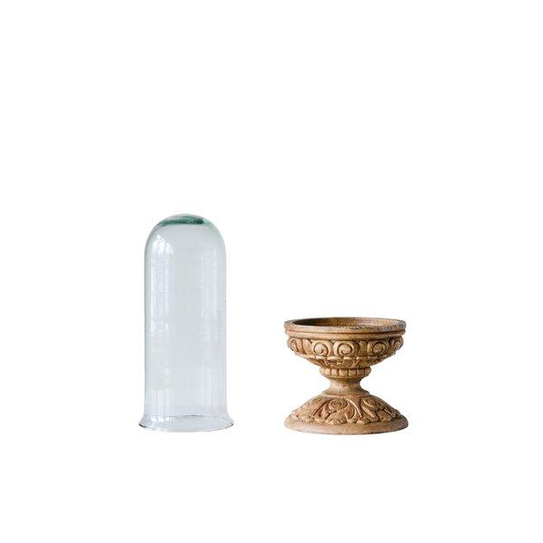 Hust Glass Cloche by Charlton Home