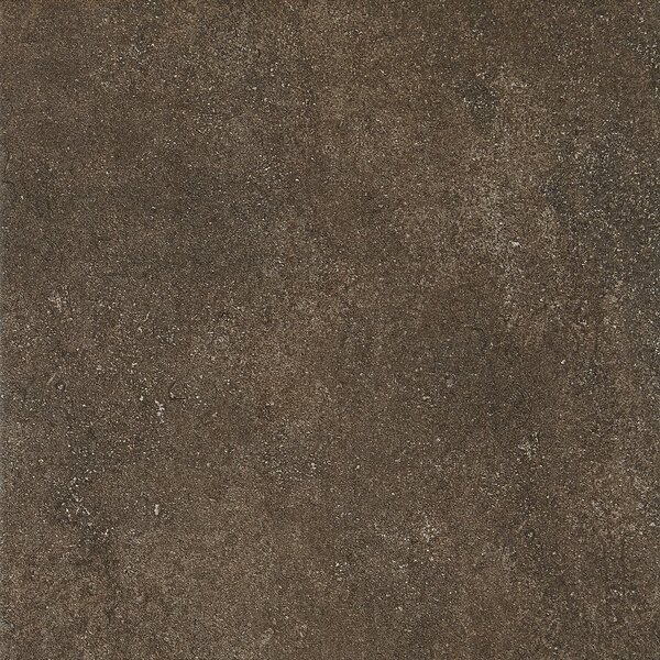 Avondale 12 x 12 Porcelain Field Tile in West Tower by Daltile