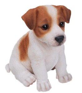 Hi Line Gift Ltd Sitting Jack Russel Terrier Puppy Statue Reviews Wayfair