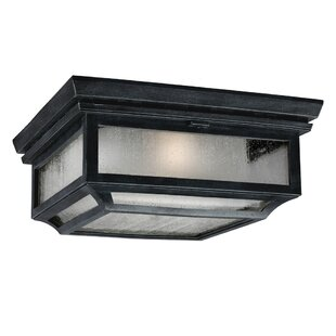 Hague 2-Light Outdoor Flush Mount By Darby Home Co Outdoor Lighting
