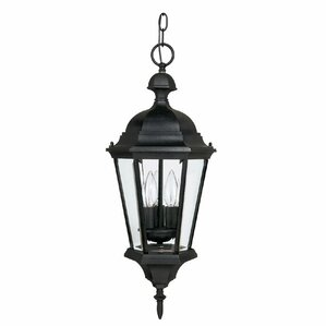 Barham 3 Light Outdoor Hanging Lantern