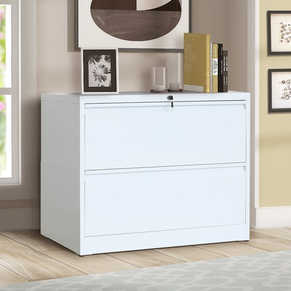 Alexcis 2-Drawer Lateral File Cabinet