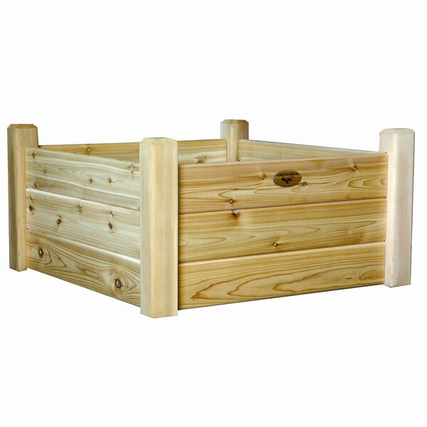 Raised Garden Beds 3 ft x 3 ft Wood Raised Garden by Gronomics