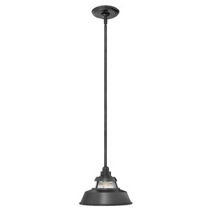 Buying Fifine 1-Light Outdoor Pendant By 17 Stories