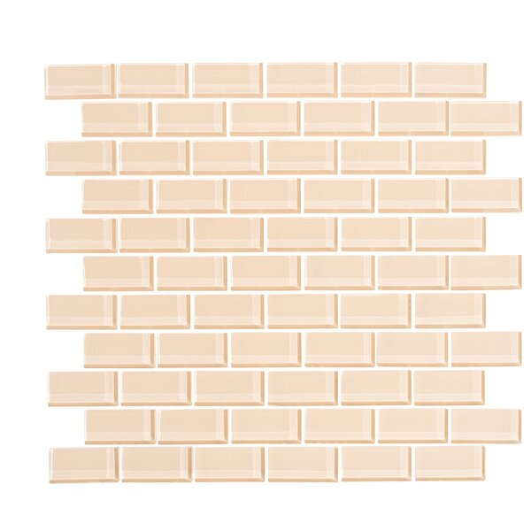 2 x 1 Glass Subway Tile in Creamsicle by Vicci Design