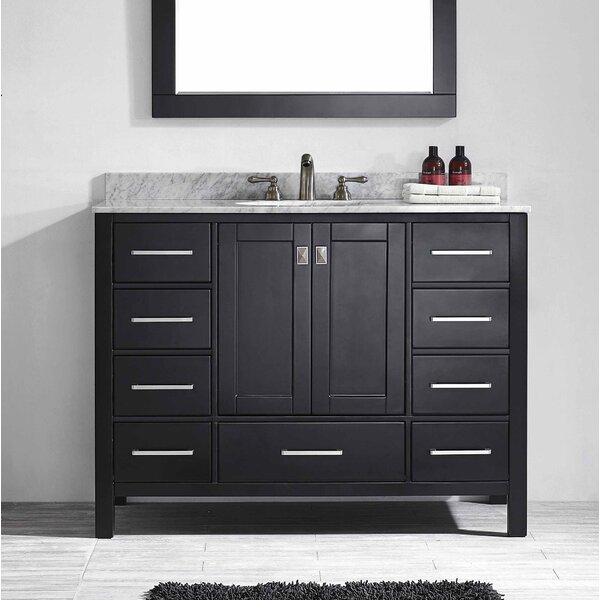 Pichardo 42 Single Bathroom Vanity Set by Brayden Studio