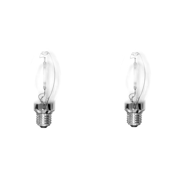 E26 Metal Halide Light Bulb (Set of 2) by Bulbrite Industries