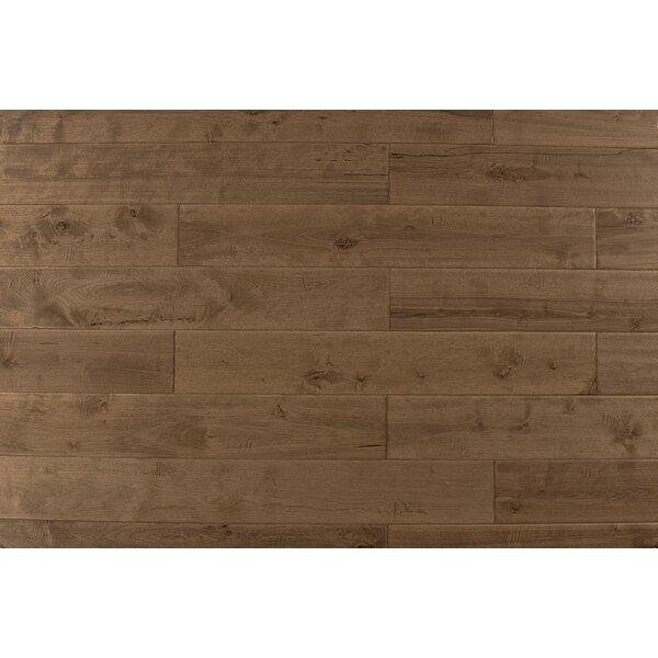 4.75 Solid Maple Hardwood Flooring in Natural Toast by Albero Valley