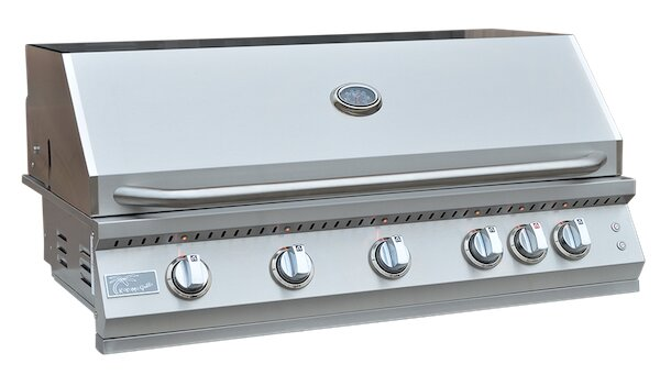 Professional BBQ 5-Burner Built-In Convertible Gas