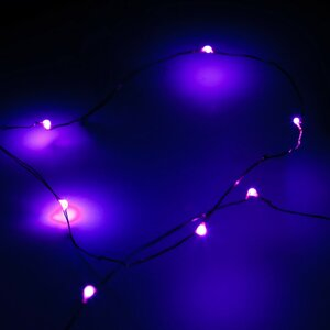 12-Light Fairy String Lights