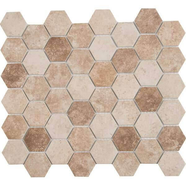 Sandhills Hexagon 2 x 2 Glass Mosaic Tile in Beige/Brown by MSI