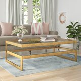 Spirgel Coffee Table by Willa Arlo Interiors