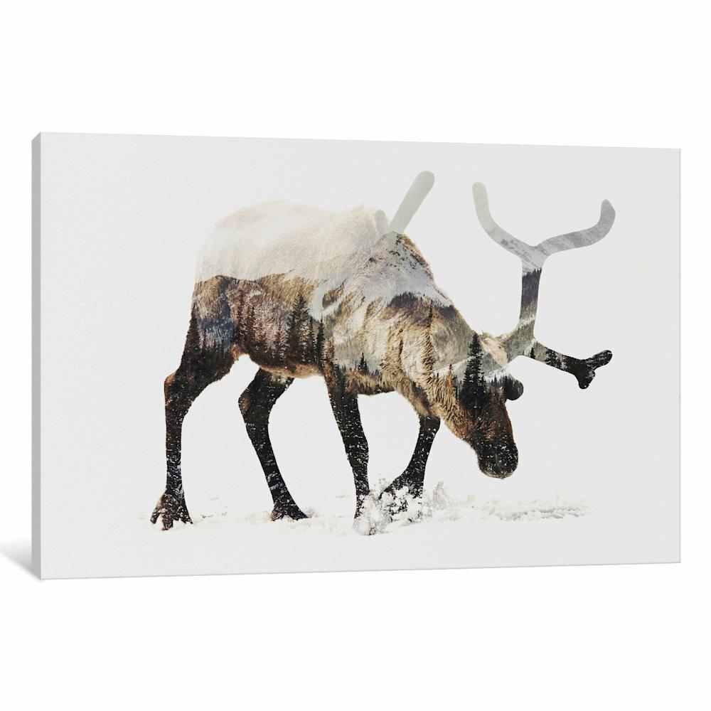 Loon Peak Reindeer Iv Graphic Art On Wrapped Canvas Wayfair