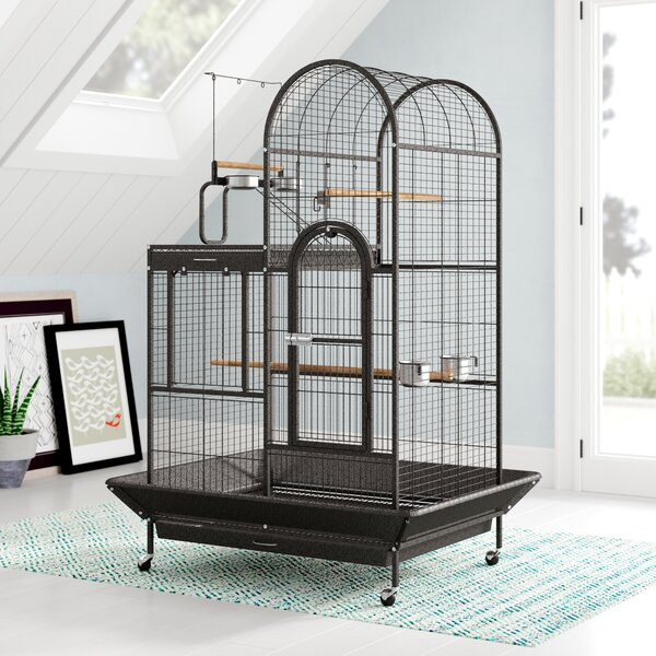 Eli Deluxe Parrot Bird Cage with Play Top by Archi
