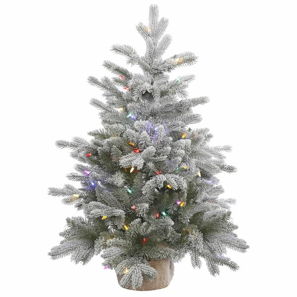 36 Frosted Pine Artificial Christmas Tree with 100 LED Multi-Colored Lights with Stand by The Holiday Aisle