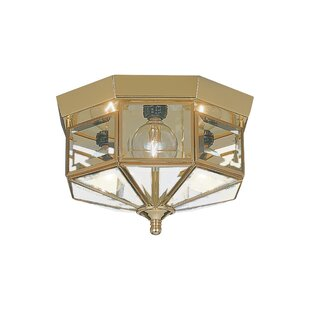 Find Andrewson 3-Light Flush Mount By Astoria Grand